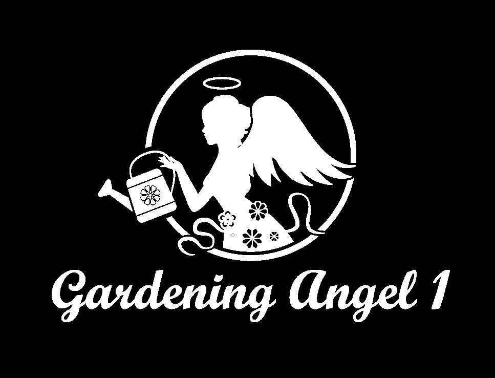 White Angel Logo